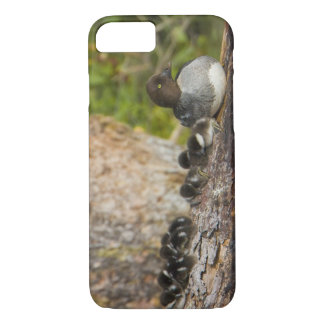 Canada, British Columbia,Common Goldeneye, iPhone 7 Case