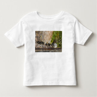Canada, British Columbia,Common Goldeneye, Toddler T-Shirt