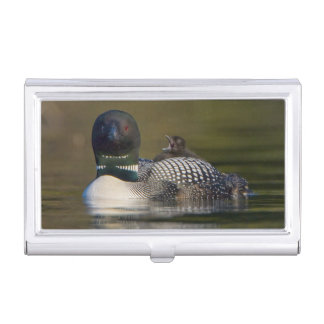 Canada, British Columbia,Common Loon, breeding 2 Business Card Holder