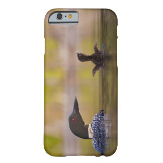 Canada, British Columbia,Common Loon, breeding 3 Barely There iPhone 6 Case