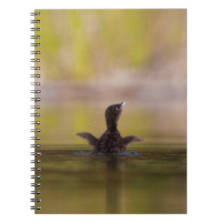 Canada, British Columbia,Common Loon, breeding 3 Spiral Notebook