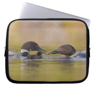 Canada, British Columbia,Common Loon, breeding Laptop Sleeve