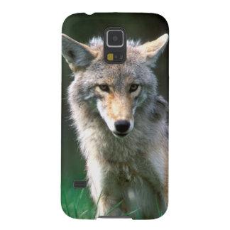 Canada, British Columbia, Coyote (Canis latrans) Galaxy S5 Case