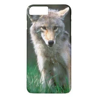 Canada, British Columbia, Coyote (Canis latrans) iPhone 8 Plus/7 Plus Case