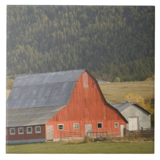 CANADA, British Columbia, Enderby. Red Barn / Large Square Tile