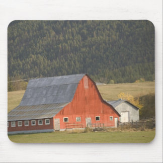 CANADA, British Columbia, Enderby. Red Barn / Mouse Mat