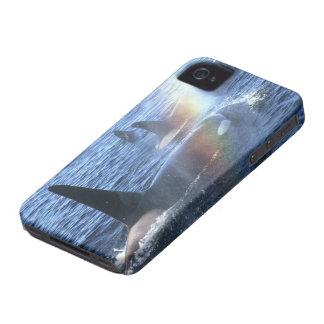 Canada, British Columbia, Johnstone Straight, iPhone 4 Case-Mate Cases