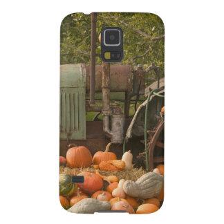 CANADA, British Columbia, Keremeos. Autumn / 2 Case For Galaxy S5