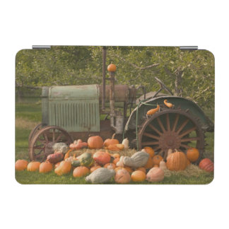 CANADA, British Columbia, Keremeos. Autumn / 2 iPad Mini Cover