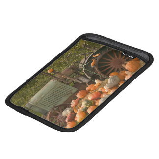 CANADA, British Columbia, Keremeos. Autumn / 2 iPad Mini Sleeve
