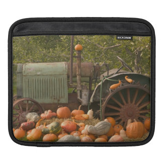 CANADA, British Columbia, Keremeos. Autumn / 2 iPad Sleeve