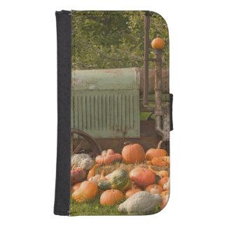 CANADA, British Columbia, Keremeos. Autumn / 2 Samsung S4 Wallet Case