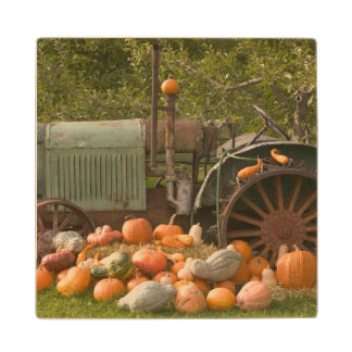 CANADA, British Columbia, Keremeos. Autumn / 2 Wood Coaster