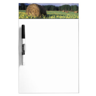 Canada, British Columbia, Kitwanga. Yellow Dry Erase Board