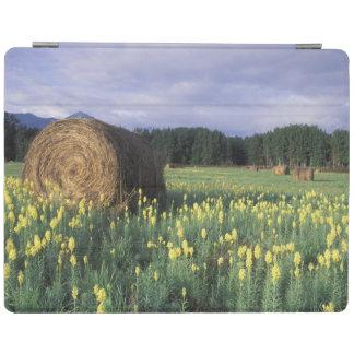 Canada, British Columbia, Kitwanga. Yellow iPad Cover