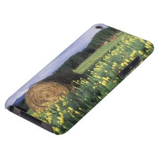 Canada, British Columbia, Kitwanga. Yellow iPod Touch Cases