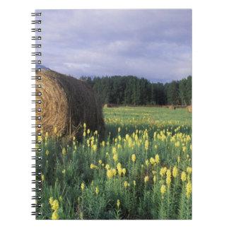 Canada, British Columbia, Kitwanga. Yellow Notebook