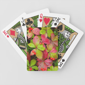 Canada, British Columbia, Mount Robson Bicycle Playing Cards