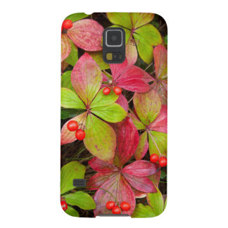 Canada, British Columbia, Mount Robson Galaxy S5 Covers