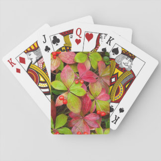 Canada, British Columbia, Mount Robson Playing Cards