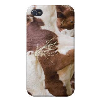 Canada, British Columbia, Pemberton Cases For iPhone 4
