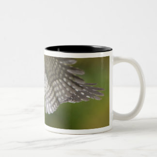 Canada, British Columbia,Red-naped Sapsucker, Two-Tone Coffee Mug
