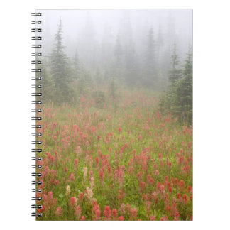 Canada, British Columbia, Revelstoke National Notebook