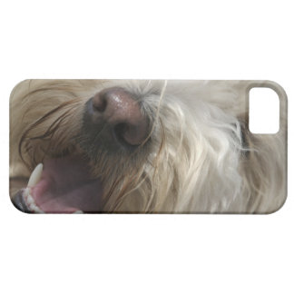 Canada, British Columbia, Vancouver iPhone 5 Covers