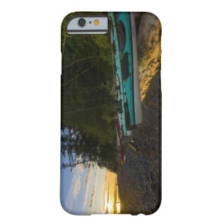 Canada, British Columbia, Vancouver Island, 2 Barely There iPhone 6 Case