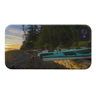 Canada, British Columbia, Vancouver Island, 2 Case-Mate iPhone 4 Cases