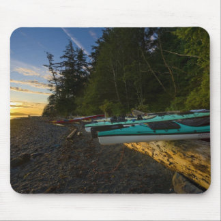 Canada, British Columbia, Vancouver Island, 2 Mouse Mat