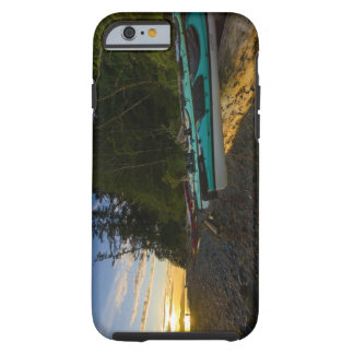 Canada, British Columbia, Vancouver Island, 2 Tough iPhone 6 Case
