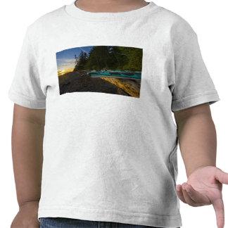 Canada, British Columbia, Vancouver Island, 2 T-shirts