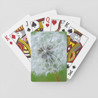 Canada, British Columbia, Vancouver Island 4 Playing Cards