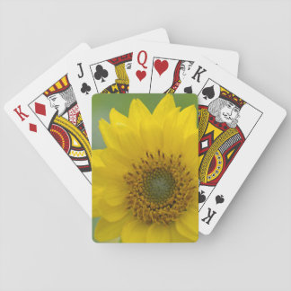 Canada, British Columbia, Vancouver Island 7 Playing Cards