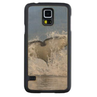 Canada, British Columbia, Vancouver Island, Carved Maple Galaxy S5 Case