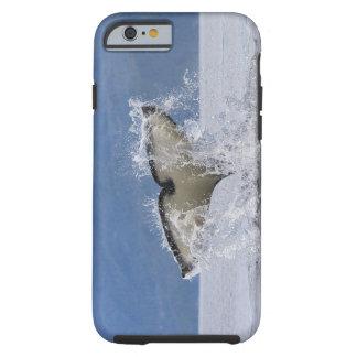 Canada, British Columbia, Vancouver Island, Tough iPhone 6 Case