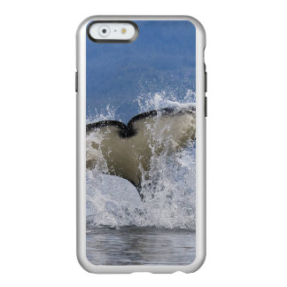 Canada, British Columbia, Vancouver Island, Incipio Feather® Shine iPhone 6 Case