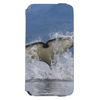 Canada, British Columbia, Vancouver Island, Incipio Watson™ iPhone 6 Wallet Case