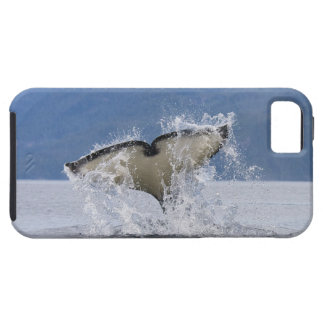 Canada, British Columbia, Vancouver Island, iPhone 5 Cover