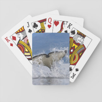 Canada, British Columbia, Vancouver Island, Playing Cards