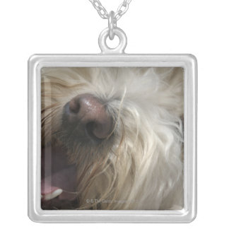 Canada, British Columbia, Vancouver Silver Plated Necklace