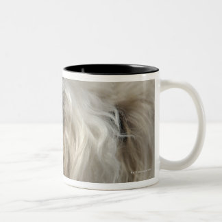 Canada, British Columbia, Vancouver Two-Tone Coffee Mug