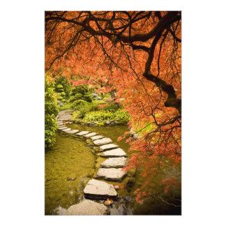 CANADA, British Columbia, Victoria. Autumn Art Photo