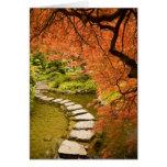 CANADA, British Columbia, Victoria. Autumn Greeting Cards