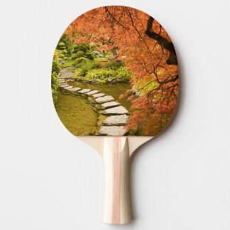 CANADA, British Columbia, Victoria. Autumn Ping Pong Paddle