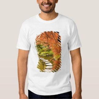 CANADA, British Columbia, Victoria. Autumn T-shirts