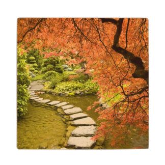 CANADA, British Columbia, Victoria. Autumn Wood Coaster