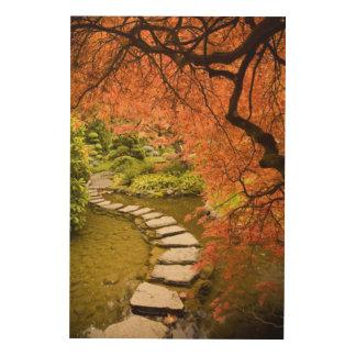 CANADA, British Columbia, Victoria. Autumn Wood Print