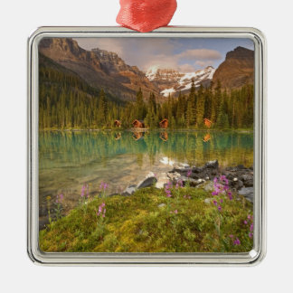 Canada, British Columbia, Yoho National Park. 2 Silver-Colored Square Decoration